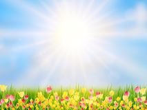 Spring Easter background. EPS 10 Royalty Free Stock Photos
