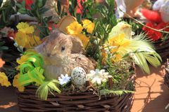 Spring easter background with rabbit Royalty Free Stock Photos