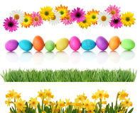 Spring Easter borders. Fresh spring and Easter borders isolated on white. Eggs, daisies, daffodils, and green grass stock images