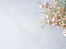 Free Spring Easter Broom Floral Minimal Pastel Color Background Royalty Free Stock Photography - 88181557