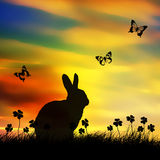 Spring easter bunny royalty free stock image