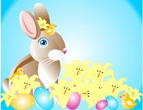 Spring Easter Bunny and chicks.. Spring is in the air, with a bunny, chicks, lilies, and eggs for Easter Stock Photos
