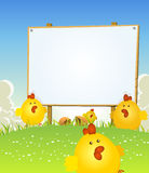 Spring Easter Chicken And Wood Sign Stock Image
