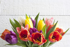 Spring easter colorful tulips on white vintage background. Planks Stock Images