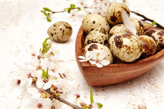 Spring easter composition Royalty Free Stock Images