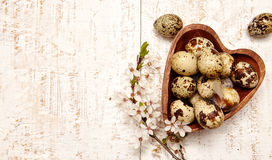 Spring easter composition Royalty Free Stock Image