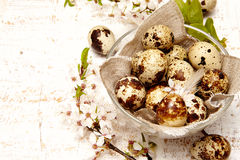 Spring easter composition Royalty Free Stock Photo