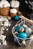 Spring easter concept, - naturally dyed easter eggs, quail eggs, feathers, easter cake, dark wooden background, copy space. Spring organic easter concept royalty free stock photos