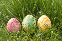 Spring Easter eggs in grass. Three speckle-colored Easter eggs resting in fresh, new spring grass Stock Image