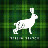 Spring or Easter greeting card, invitation. Illustration of white hare or rabbit. Tartan checkered plaid. Vector Stock Photos