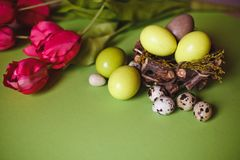 Spring and Easter holiday concept with eggs and tulips royalty free stock photos