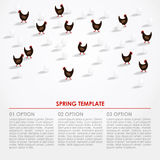 Spring easter infographics background with hens and eggs,  Stock Photography