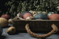 Spring easter minimal background rustic style composition - organic naturally dyed easter eggs. Spring easter minimal rustic style concept - organic naturally stock photos