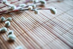 Spring Easter photo. Willow branches on a wooden substrate. Background stock photos