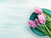 Spring easter purple tulip floral green pastel color background Stock Image