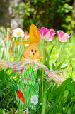 Spring easter rabbit Royalty Free Stock Image