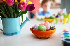 Spring easter tulips in bucket on white table Royalty Free Stock Photos