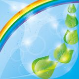 Spring eco background,  leaves and rainbow Stock Image