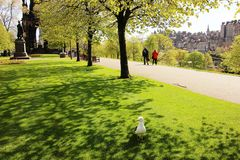 Spring in Edinburgh Stock Images