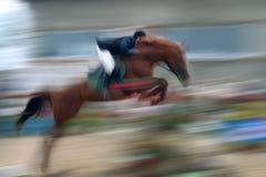 Spring een paard door de barrière Stock Afbeeldingen