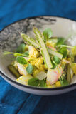 Spring egg salad with asparagus and microgreens. Spring egg salad with asparagus and fresh, young sorrel, pea sprouts and sunflower sprouts stock images