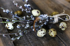 Spring egg twig willow wood background stock photo