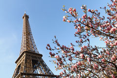 Spring By The Eiffel Tower Stock Image
