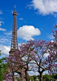 Spring at the Eiffel Tower Stock Image