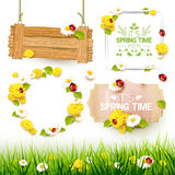 Spring elements collection Stock Photography
