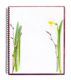 Spring empty book ready for recipes Royalty Free Stock Images