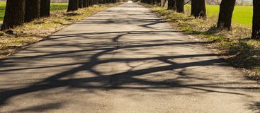 Spring empty road among trees and green grass. Spring empty road among trees, blue sky and green grass royalty free stock photography
