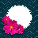 Spring empty round banner on element dark zigzag background lines and pink daisy flowers Banner design element for springtime. Spring empty round banner on vector illustration