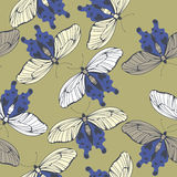 Spring endless pattern with decorative butterflies Royalty Free Stock Photo