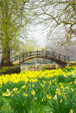 Spring in England Stock Images