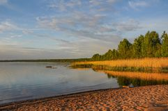 Spring evening on the banks of the river Neva. Stock Photos