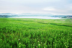 Spring evening photo of Lake Most viewed from the verdant fields in North Bohemia landscape Royalty Free Stock Photography