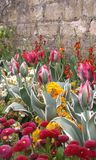 Spring extravaganza Royalty Free Stock Images