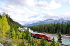 Spring för fraktdrev i kanadensiska steniga berg i höst, kanadensiska steniga berg Arkivbild