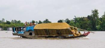 Spring för lastfartyg på Mekonget River Royaltyfria Bilder