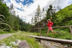 Spring för ung kvinna på bron i berg på sommardag royaltyfri bild