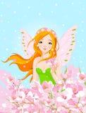 Spring Fairy and Blossom Flowers Stock Photos