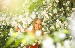 Spring fairytale Royalty Free Stock Photo