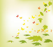 Spring faling leaves and butterflies background Royalty Free Stock Image