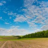 Spring farm field hills Royalty Free Stock Image
