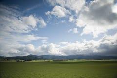 Spring farm fields Royalty Free Stock Photos