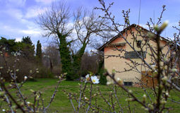 Spring farm house Stock Image