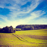 Spring Farm Landscape with Field and Clouds Stock Photo