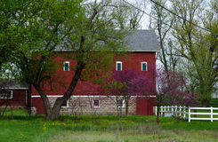 Spring farm in Michigan Stock Images