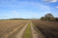 Spring farm track with plowed fields Stock Photo