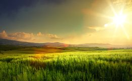 Art spring farmland and country road; tuscany countryside rolling hills stock images